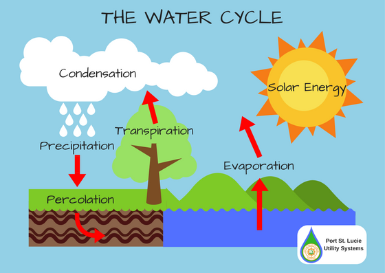 Education utility systems department download create your own water cycle ccuart Image collections