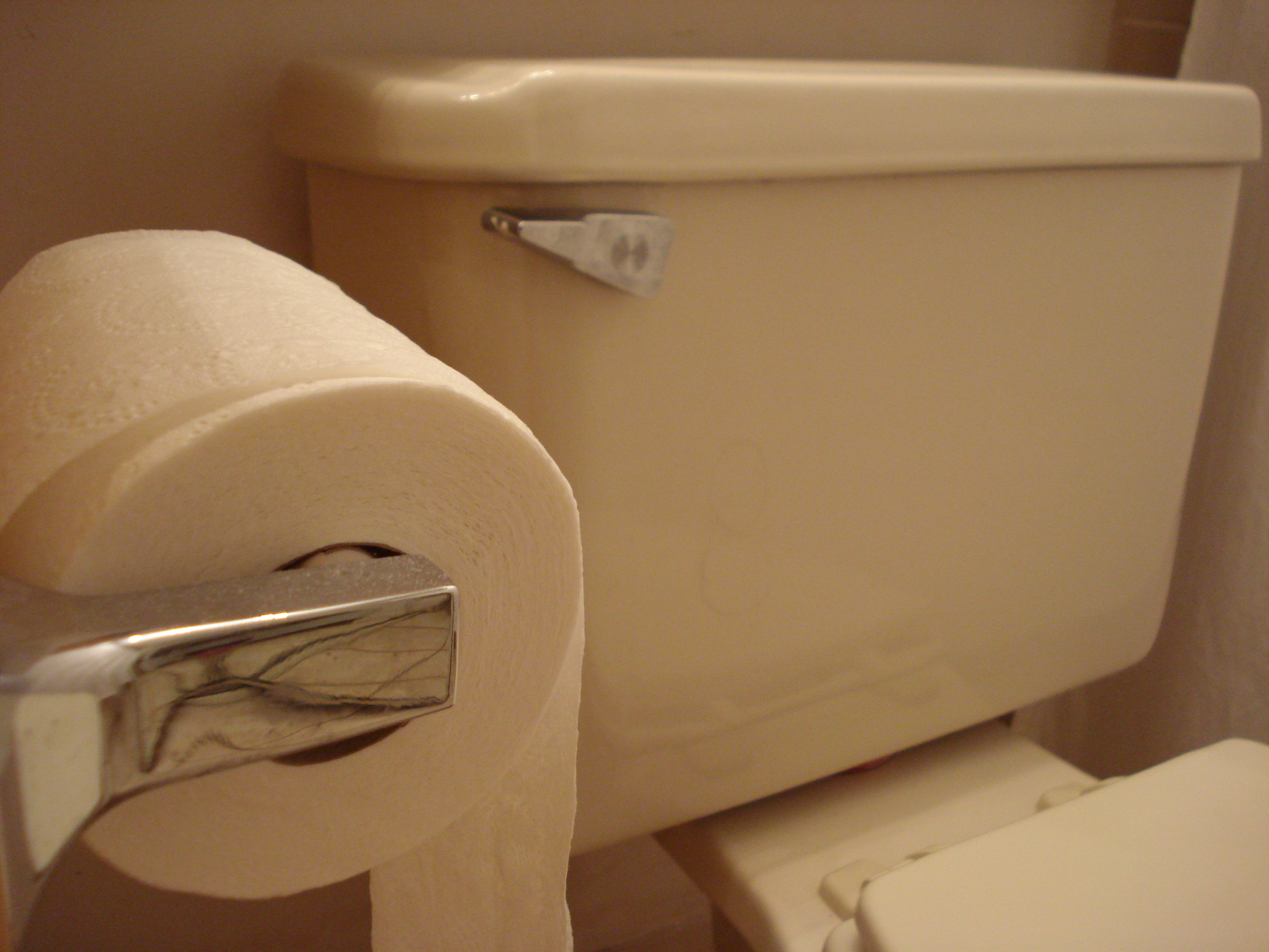 Interior of bathroom showing toilet paper holder and toilet